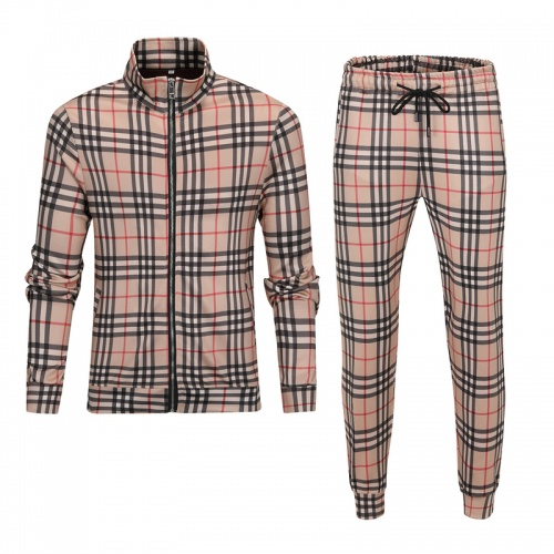 Burberry Tracksuits Long Sleeved For Men #893181