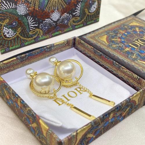 Christian Dior Earrings #893207