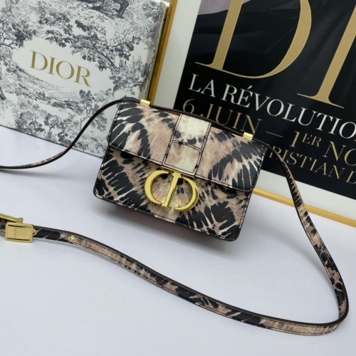 Christian Dior AAA Quality Messenger Bags For Women #893809