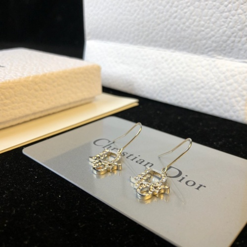 Christian Dior Earrings #893938