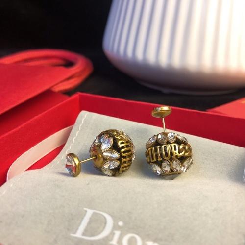 Christian Dior Earrings #893953