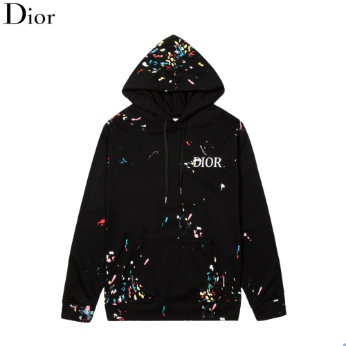 Christian Dior Hoodies Long Sleeved For Men #894658