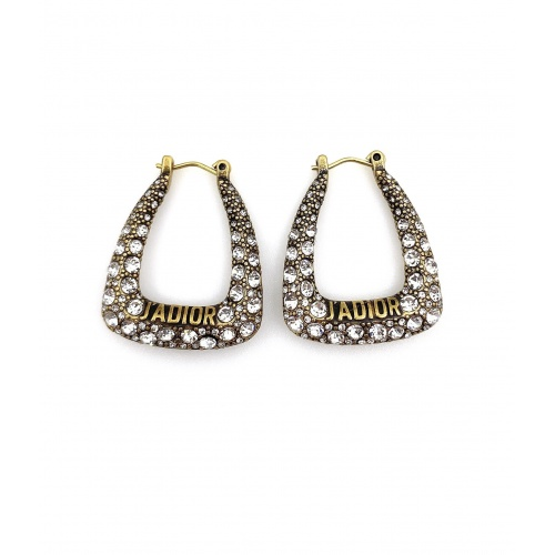 Christian Dior Earrings #895080