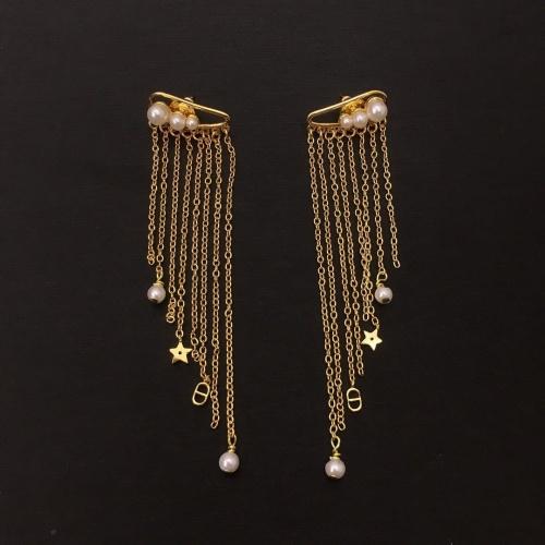 Christian Dior Earrings #895081