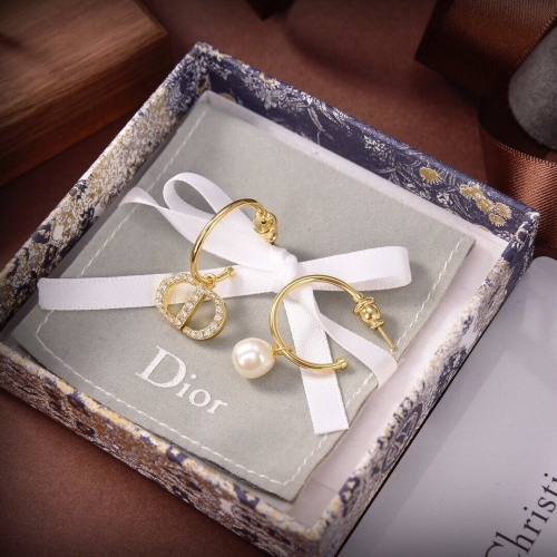 Christian Dior Earrings #895595