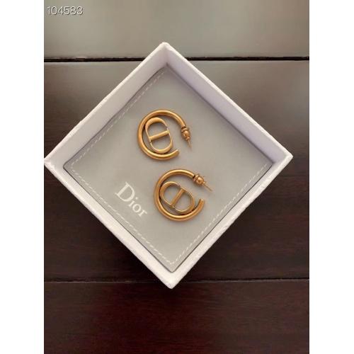 Christian Dior Earrings #896239