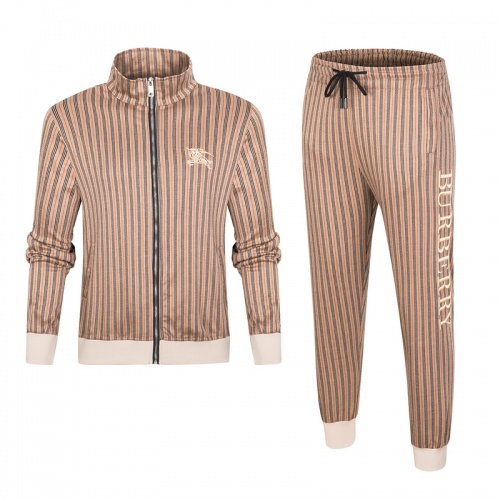 Burberry Tracksuits Long Sleeved For Men #898477