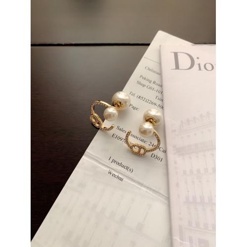 Christian Dior Earrings #898609