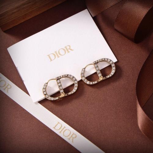 Christian Dior Earrings #898635