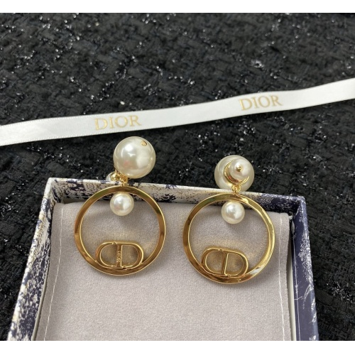 Christian Dior Earrings #898643