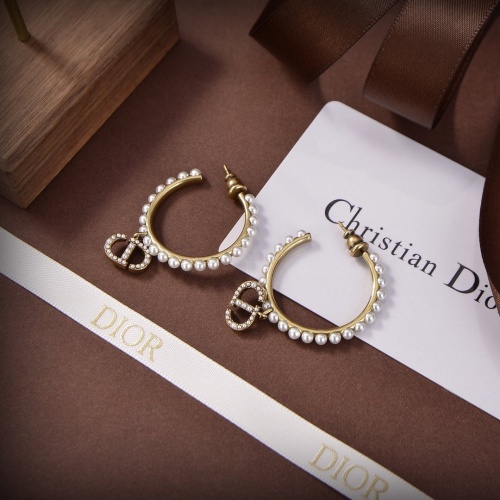 Christian Dior Earrings #899028