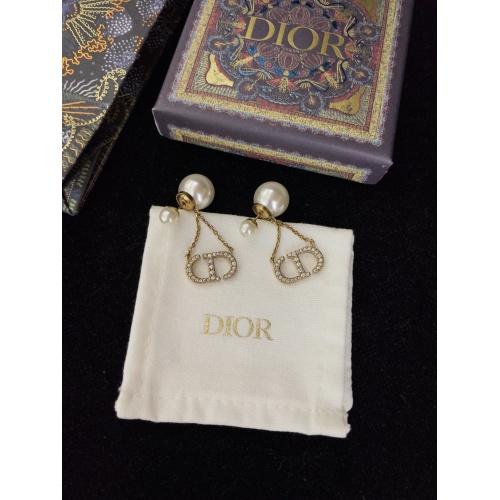 Christian Dior Earrings #901940