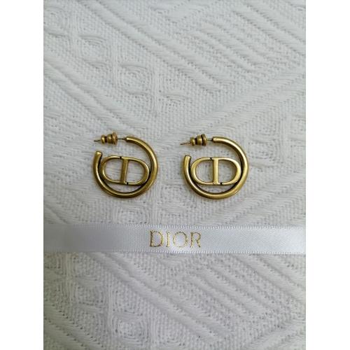 Christian Dior Earrings #901951