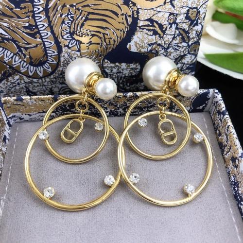 Christian Dior Earrings #910299