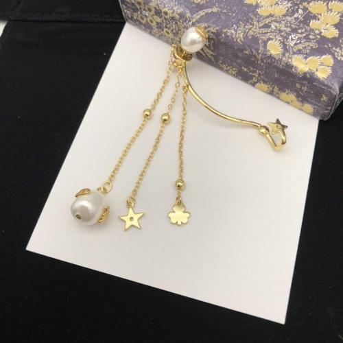 Christian Dior Earrings #910923