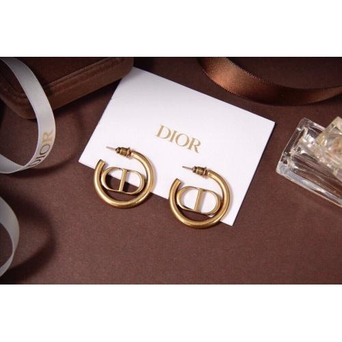 Christian Dior Earrings #910924