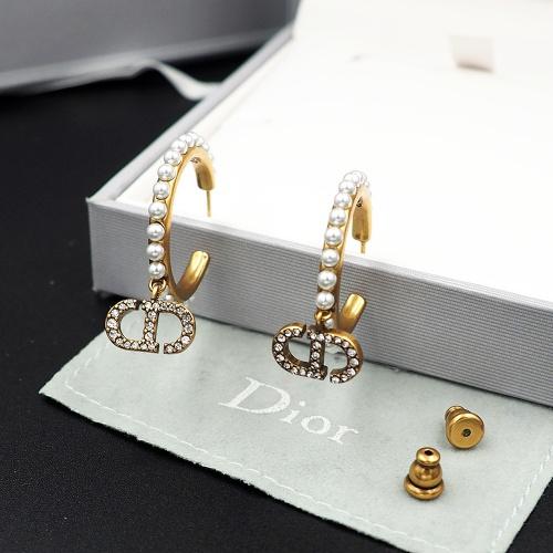 Christian Dior Earrings #915952