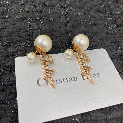 Christian Dior Earrings #916678