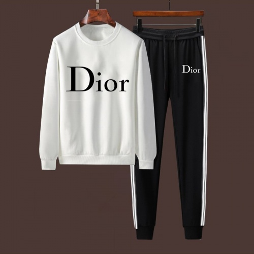 Christian Dior Tracksuits Long Sleeved For Men #917088
