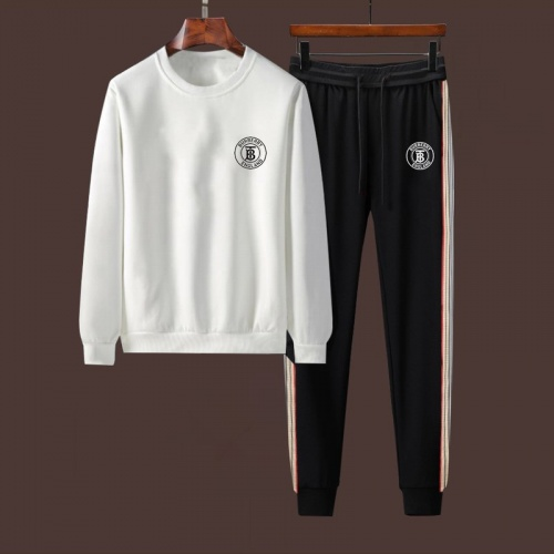 Burberry Tracksuits Long Sleeved For Men #917104