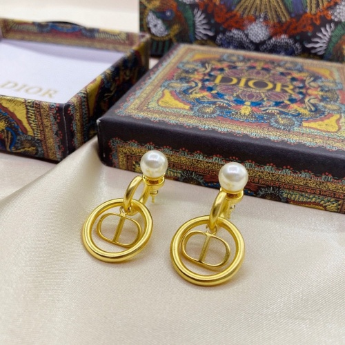 Christian Dior Earrings #919141